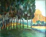 Landschap hoge bomen